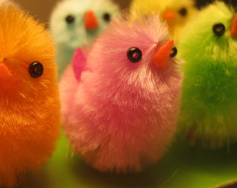 Easter Chicks or Peeps Holiday Decor Craft Supply