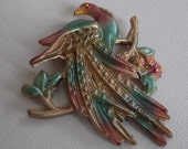 Antique brooch, early 1900's aqua and pink enamel exotic bird on branch with flowers collectible  brooch,old C catch