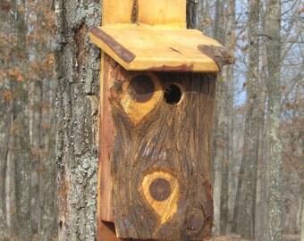 Cedar bluebird house nest box rustic rough one of a kind nature outdoor lover bird watcher garden decor birthday gift idea ready to ship