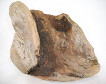 Pacific Northwest Driftwood Piece/Washington State Driftwood/Olympic Peninsula Driftwood
