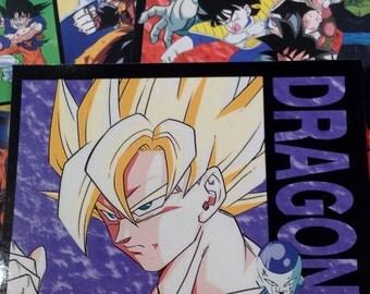 Dragonball Z Stickers, 4x6