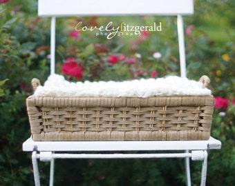 DIGITAL Photography Backdrop - Basket in Roses - Instant Download Newborn Prop Backdrop Background - Digital Newborn Basket Prop
