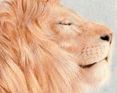 """Original ACEO - Lion - 2.5"""" x 3.5"""" Unique Artwork - Free Shipping - Portion of Proceeds to Charity"""