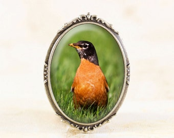 American Robin Brooch - Bronze Bird Brooch, Red Robin Jewelry, Bronze Bird Jewelry, Robin Bird Photo Jewelry, Spring Robin Jewellery Broach