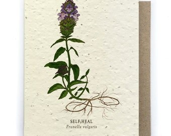 Self-Heal Card - Plantable Seed Paper - Blank Inside