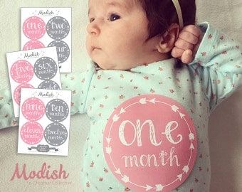 FREE GIFT, Baby Month Stickers, Girl, Baby Girl Month Stickers, Monthly Baby Stickers, Belly to Baby, Pink, Gray, Grey, Tribal Arrows