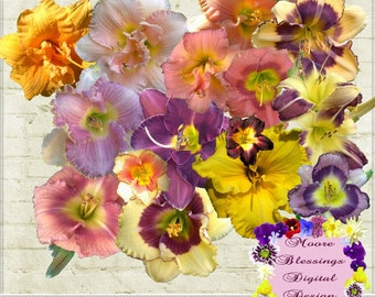 Lovely Lilies ~ Commercial Use Digital Elements