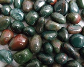 Bloodstone Set of 6 Tumbled Small Heliotrope Crystals Stones (CRYT-BS-S)