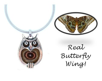 Real Butterfly Wing Owl Necklace- Blue Morpho, Hooty Owl, Owl Jewelry, Owls, Animals, Nature, Natural