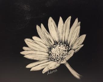 Daisy, small flower, original artwork, scratchboard