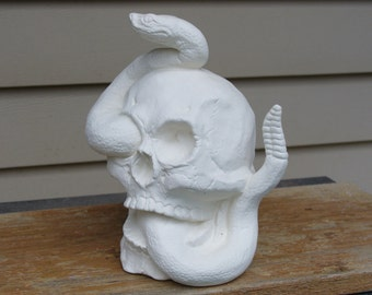 Ceramic Bisque Skull with Snake