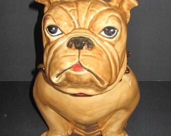 Large Bulldog Cookie Jar