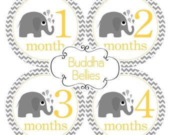 Elephants Monthly Baby Stickers for Baby Girl or Baby Boy Gender Neutral Month Stickers - Baby Shower Gift for Elephant Themed Nursery N133
