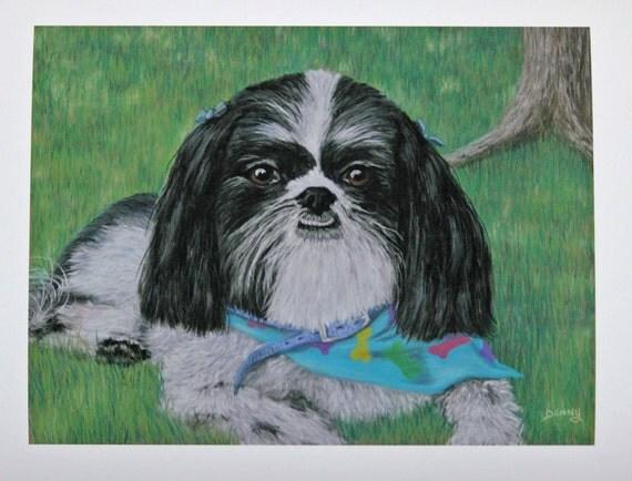 Fine Art Print, Dog art, dog art print, Puppies, realism, Dog painting, signed art print, Giclee print, pet portrait art, Shih Tzu art