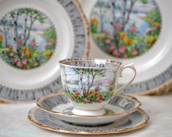 Royal Albert Silver Birch 5 Piece Place Setting, Bone China English Tea Cup Set, Replacement China, ca 1950