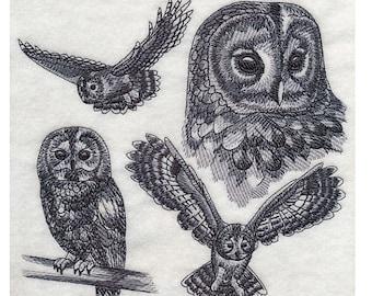 Custom Embroidered Tawny Owl Sweatshirt S-3XL
