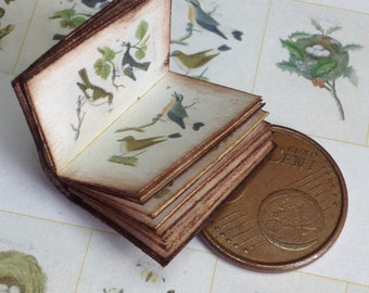 1:12 Miniature birds and nests book