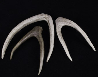 """Multipack 5-7"""" DRILLED Antler Forks Real Deer Bone Taxidermy Pendant Necklace Jewelry Beads LARGE"""