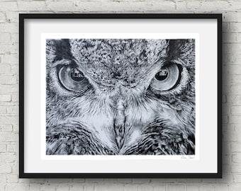 Owl Art print  Owl Illustration owl wall art  Wall Decor