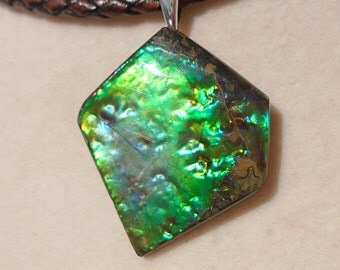 Canadian Ammolite Pendant with Leather Necklace 20 Inches