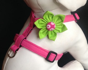 Dog Harness Flower Set - Pink  - Size XS, S, M