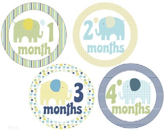 Monthly Baby Stickers Elephants Monthly Stickers Baby Boy Stickers Milestone Stickers Baby Monthly Stickers Boy Month Stickers