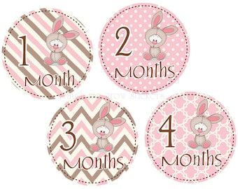 Baby Month Stickers Baby Monthly Stickers Baby Shower Gift Bunny Month Stickers Girl