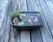 Miniature Koi Pond in Cute Stoneware Dish