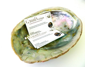 Business Card Holder + Abalone Card Holder + Shell Holder + Sea Shell Stand