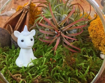 Unicorn Air Plant Terrarium - A Unique Holiday or Birthday Gift