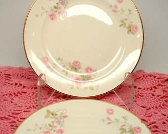 Vintage Dessert Plates Pope Gosser China Bread Butter Plates Pink Roses Shabby Chic Set of 2 Vintage Wedding