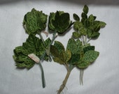 Vintage Millinery Leaves, Green Velvet Craft Leaves, Made in Korea, Large Lot