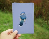 postcard with blue jay birthday gift