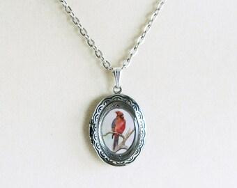 Silver Bird Locket - Red Cardinal Necklace - Cardinal Jewelry