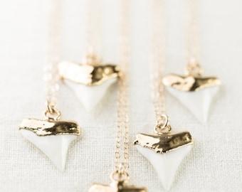 SALE Mano-niho-kahi necklace - gold shark tooth necklace, white gold shark tooth, gold dipped shark tooth necklace, beach, boho jewelry, haw