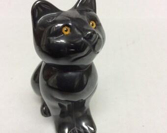 Adorable Hematite Cat with Golden Eyes