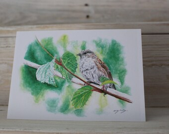 Blank Thrush Bird Greeting Card