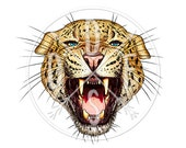 A0039 - Leopard, Roaring Open Jaw/Mouth, Wild Cat, Animal - Digital Print for Instant Download. Printable Illustration. PNG, JPG file 8x10''