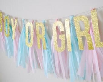 Gender Reveal Glitter Tassel Banner - One Stylish Party