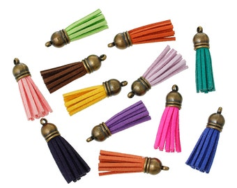 30 followers, tassels, tassel from suede leather, color mix