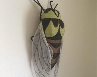 Cicada Soft Sculpture (Neotibicen lyricen)