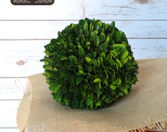 Preserved Boxwood - Boxwood Ball - Boxwood Sphere - Home Decor - Boxwood Topiary - Topiary - Natural Boxwood