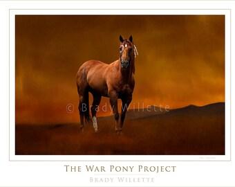 Poster of Lakota HunkPapa Sioux War Pony With Native American Symbols