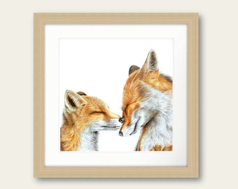 Cause I Love You Foxes Print Artwork Love Picture