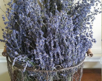 "10 Deep Blue 12"" Dried Lavender Buds Bouquets"