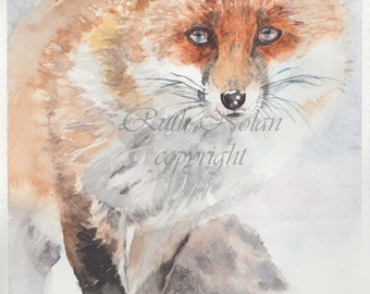 FOX mounted watercolour print by Ruth Nolan