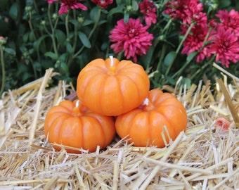 Small Pumpkin Beewax Candle Set