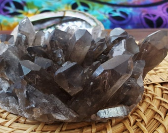 Natural Smokey Quartz Cluster AA Grade ~ 1 Reiki infused crystal cluster approx 5.75 x 4.5 x 3 inches (E03)