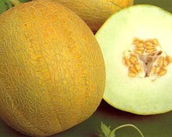 Melon ananas seeds,432,organic seeds, non gmo seeds, gardening, fruit seeds,