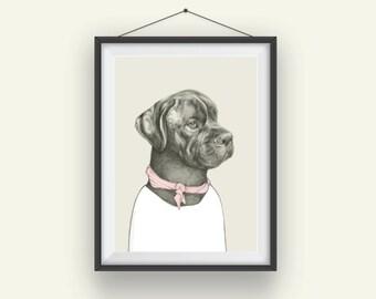 Bull Mastif, Archival Art Print